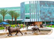 Учебное заведение INTO University of South Florida Университет INTO University of South Florida
