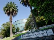 Учебное заведение The University of Auckland, Университет Окленда